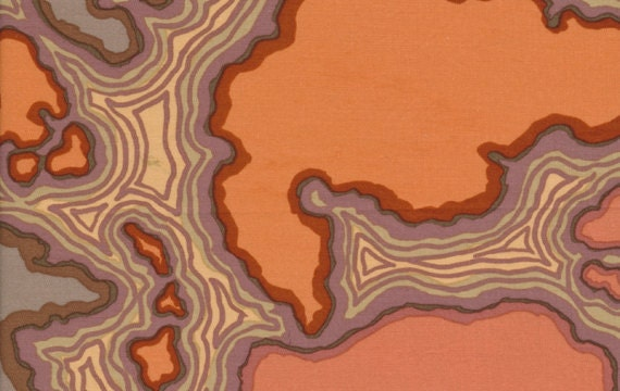 Kaffe Fassett Map in Brown for Westminster Fabrics - SPECIAL PRICE on ONE Yard Cuts
