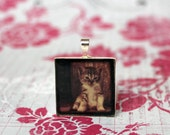Tabby Cat Kitten Art Photo Pendant