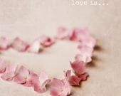 Love Is - Fine Art Photo- Eva Ricci Studio- 8x8 - Pink hydreangea heart