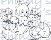Odd Bod Bunny