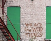 FREE SHIPPING PHOTOGRAPHY - We are the Wild Things - Original 5x5 Photograph Print of Graffiti Art