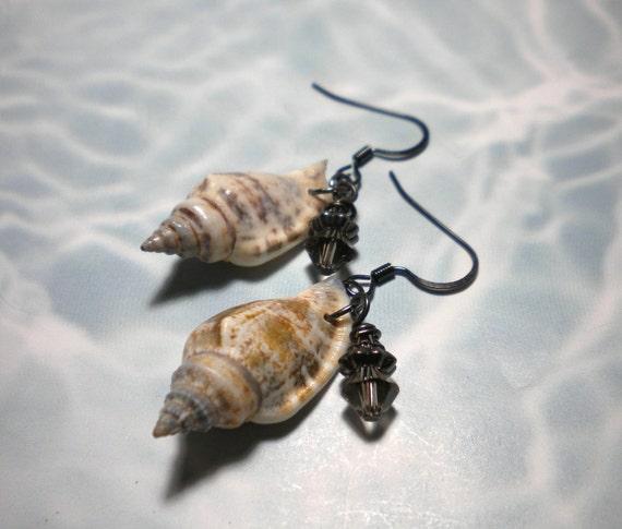 Seashell Earrings Periwinkles