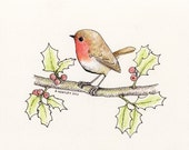 Little Red Christmas Robin  - Original Pencil/Ink Drawing