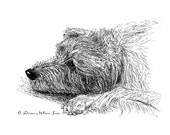 Irish Wolfhound Ink Portrait Notecards Set of Two