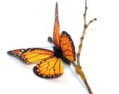 SALE Monarch Butterfly Fascinator