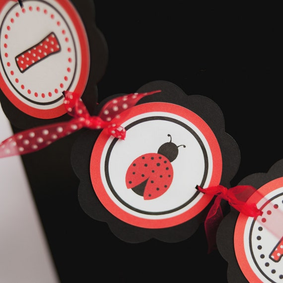 Ladybug Theme I am 1 MINI BANNER Happy Birthday Party Sign Decoration in Red and Black