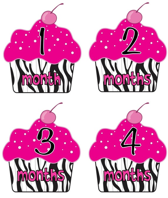 Baby Month Stickers Baby Girl Monthly Onesie Stickers Hot Pink Zebra Stripes Cupcake Month Stickers Girl Baby Shower Gift Photo Prop Molly
