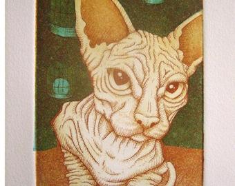 Guardian, hairless sphinx cat,bird cage
