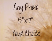 5x7 any photo your choice flowers, nature, beach, landscape