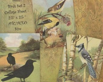 Instant Download Printable Collage Sheet 2.5 x 3.5 ATC ACEO size - Birds Set 2