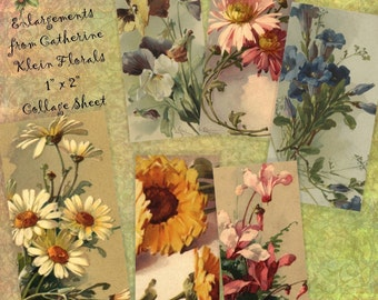 Instant Download Printable Collage Sheet 1 x 2 size - Catherine Klein Florals
