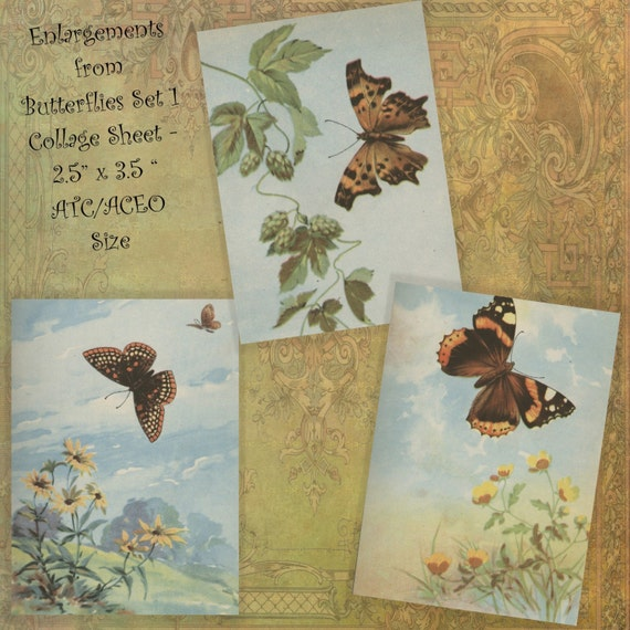 Instant Download Digital Printable Collage Sheet 2.5 x 3.5 ATC ACEO size - Butterflies Set 1