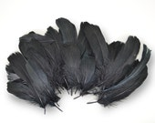 40-60pcs Goose Satinettes loose feathers, 6 grams, PITCH BLACK