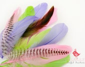 VOGUE GOOSE NAGOIRE feathers Assortment 002 Pastel, baby pink, neon green, pastel purple