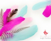 VOGUE GOOSE NAGOIRE feathers Assortment 004, candy colors, baby blue, pink, hot pink