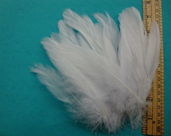30 MED Satin White Goose Feathers.