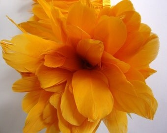 25 Tangerine XL Studio Dyed Goose Feathers. No. 011