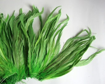 20 PCS / COQUE TAIL / Lime / 7-8 inches tall.