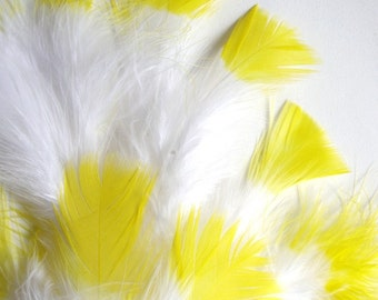 30-40 PCS / MARABOU FLUFF / Yellow Tipped / 4-6 inches tall.