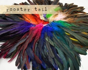 25-30 pcs - Rooster Tail, Naturally Dyed, Unbleached, 6-8 inches tall.