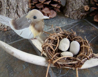 Bird Nest, Deer Antler Arrangement - Home Decor