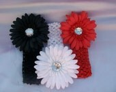 3 Daisy Flower Clips and 3 Interchangeable Headband Set..Great for Newborn Toddler Big Girl