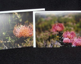 Wildflower Notecards - Set of 4