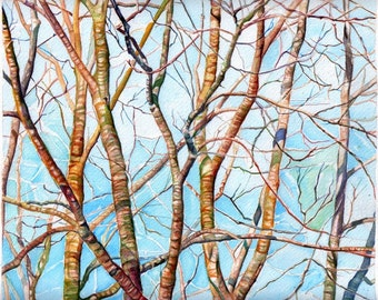 Art Painting print from Original Watercolor Painting--Branches in Maine (spring) 3--Landscape Nature