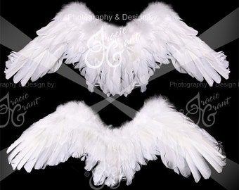 Child Angel Wings Digital Photography Photo Prop FILE #5439