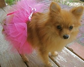 Bow Wow Ballerina Doggie/Doll Tutu