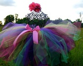 Custom Listing for Detta: Adult Circus Carousel Tutu