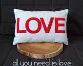 LOVE cushion cover - light blue and red
