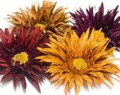 INVENTORY REDUCTION SALE - Velvet Spider Daisy Hair Clip, Brooch or Headband in Amber Orange, Terra Cotta Brown, Eggplant, and Burgundy