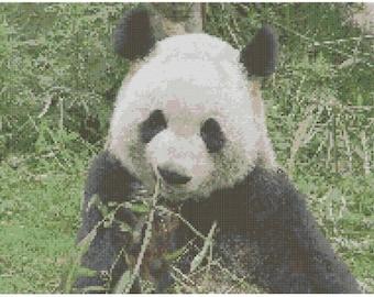Hungry Panda Cross Stitch E-Pattern