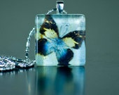 Butterfly Fly Away Glass Tile Pendant with free chain and gift bag Great gift for teacher, coworker, mom, or friend
