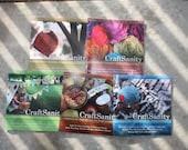 CraftSanity Magazine Bulk Pack - SALE