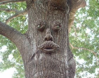 Mr. MapleShade Tree Face