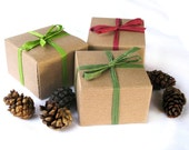Eco-Friendy Holiday Herbs in a Box Junior Gift