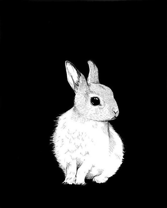 Bunny Print 8x10