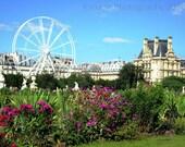 Paris Photo - Jardin des Tuileries- Original Metallic Photography Print