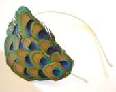 Peacock headband & clip.