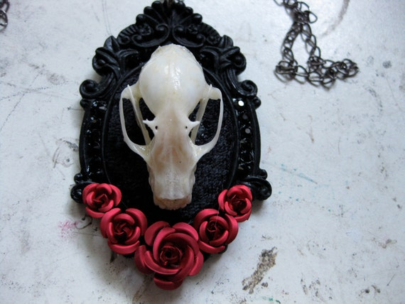 Taxidermy Bat Skull with Rose Necklace