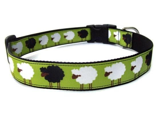 Black Sheep Dog Collar