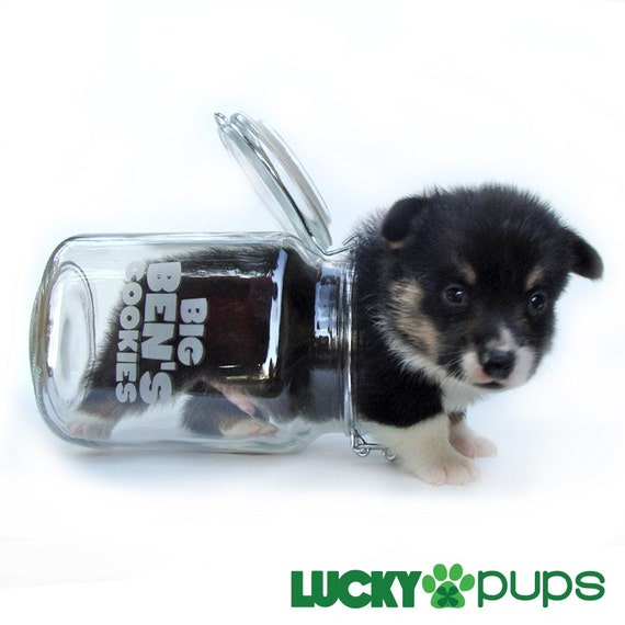 Personalized Dog Treat Jar - Glass Lock Top