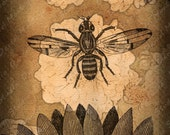 ACEO Limited Edition Print  - The Honey Bee II - Digital Collage