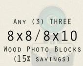 Photography - Wood Photo Blocks - Any three 8x8 or 8x10 wood mounted prints