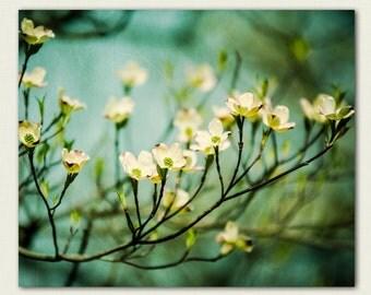 Nature Print - fine art flower photography - wall art -  Ethereal - teal, butter yellow, girls room decor, feminine