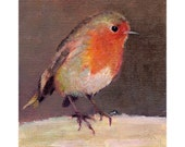 Robin original oil painting 4x5 ins