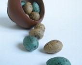 Tiny Bird Eggs in a Pot
