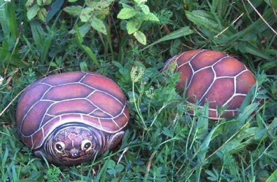 Come dipingere una tartaruga su un sasso lezione di pittura - Pagine di colorazione tartaruga ...